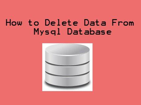 How to Delete Data From Mysql Database