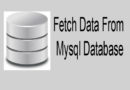 How to Fetch Data From Mysql Database using PHP